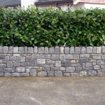 Limestone boundary wall with capping